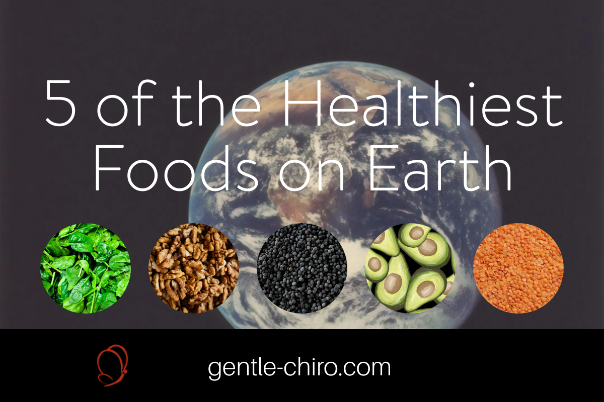 5 of the healthiest foods on earth